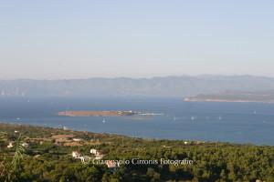 Il comune di Carloforte ha intrapreso un percorso strutturato di approfondimento e di studio finalizzato all'istituzione di un'Area Marina Protetta nel mare dell'Isola di San Pietro.