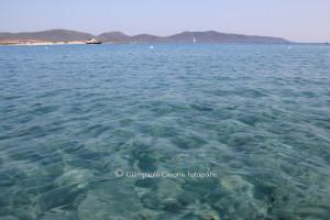 Il bilancio sui 29 punti monitorati da Goletta Verde lungo le coste della Sardegna dal 15 al 18 giugno è molto positivo.