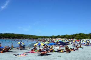 """Il 3 e 4 agosto ritorna la manifestazione """"Ma il mare non vale una cicca?"""" organizzata dai volontari di Marevivo."""