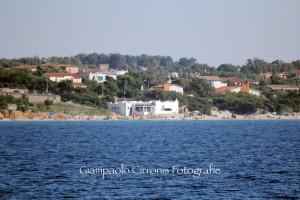 I consiglieri di minoranza del comune di Calasetta denunciano i ritardi nella pulizia delle spiagge.