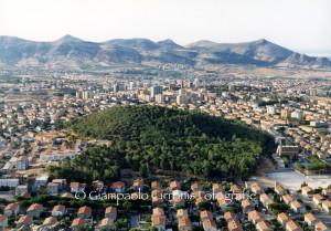 Carbonia: lunedì 5 agosto intervento di disinfestazione in via Monte Rosmarino.