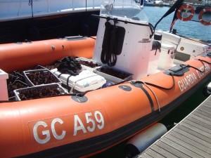 Gli uomini della Guardia Costiera di Portoscuso hanno sequestrato 2.000 ricci e attrezzatura da pesca.