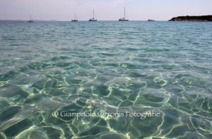 Tesori di Sardegna: Guidi (Isola di San Pietro).
