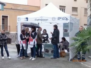 """Sabato 5 aprile a Cagliari, """"Giornata per la prevenzione dell'Alzheimer e del colesterolo""""."""