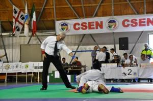 Sabato 7 e domenica 8 giugno Portoscuso ospiterà uno stage regionale di ju jitsu.