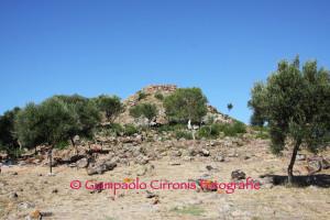 E' stato presentato questa mattina, a Carbonia, l'inizio della campagna di scavo del #Nuraghe Sirai.