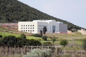 Rossana Casale ed i vini della Cantina Mesa saranno protagonisti domani sera, a Tratalias, della 4ª tappa del #Carignano Music Experience.