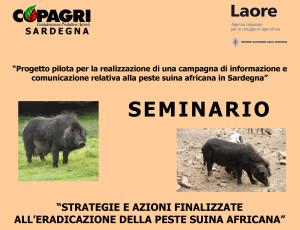 Venerdì, a Villagrande Strisaili, si terrà un seminario sui problemi legati alla diffusione e all'eradicazione della peste suina africana.