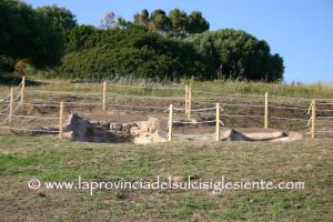 Gli orari delle visite all'area archeologica di Monte Sirai e al sistema museale del comune di Carbonia.