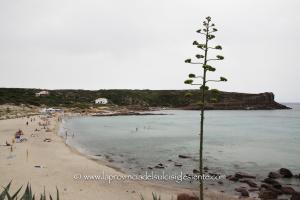 """Da ieri, 15 giugno, la spiaggia """"La Caletta"""" di Carloforte è cardioprotetta, con un defibrillatore DAE donato dal Rotary Club di Cagliari."""