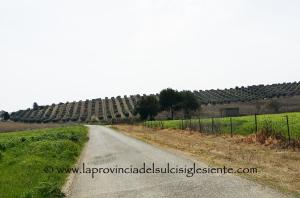 Piermario Manca (Partito dei Sardi): «Il PdS critica l'assessorato dell'Agricoltura sullo sblocco dei contributi europei per i pascoli boschivi».