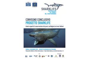 Si svolgerà a Roma il prossimo 30 giugno il convegno conclusivo del Progetto Sharklife.