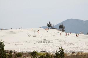 Folla alle dune 7