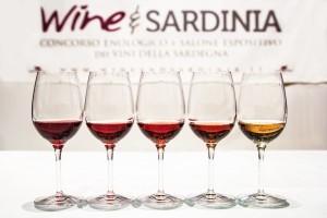 Wine and Sardinia Concorso 2015 - commissione3