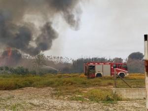 Un vasto incendio si è sviluppato nella tarda mattinata a Is Gallus, piccola frazione alle porte di Carbonia.