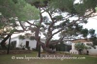 La Maddalena: riapre la Casa Bianca di Giuseppe Garibaldi
