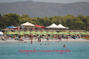 Michele Ennas (Lega): «Più certezze per gli operatori balneari in Sardegna».