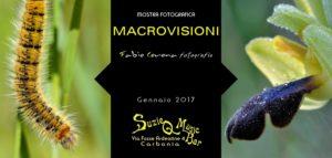 """Fabio Corona, fotografo di Carbonia, esporrà le sue """"Macrovisioni"""" per tutto il mese di gennaio, nella sala mostre del SusieQ Music Bar, a Carbonia."""