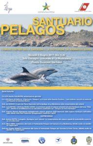 """Giovedì 8 giugno, a La Maddalena, si svolgerà la tavola rotonda dal titolo: """"I comuni costieri della Sardegna e la protezione dei mammiferi marini""""."""