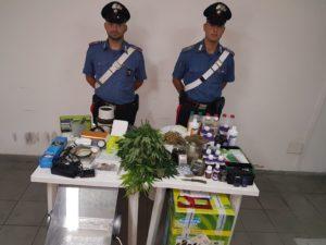 I carabinieri di Sant'Antioco hanno arrestato un disoccupato di 55 anni che coltivava sostanze stupefacenti nella propria abitazione.