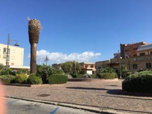 L'Ufficio Manutenzione del comune di Carbonia (per il tramite della So.Mi.Ca.), ha abbattuto le palme malate in Piazza Ciusa.