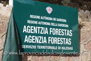 Filippo Spanu e Donatella Spano: «I lavoratori dell'Agenzia Forestas non sono discriminati rispetto agli altri lavoratori del Sistema Regione».