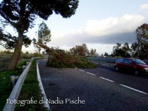 Il fortissimo vento di maestrale che ha raggiunto e superato la velocità di 100 kmh, ha creato fortissimi disagi in moltissimi centri della Sardegna, rinviate numerose partite di calcio.