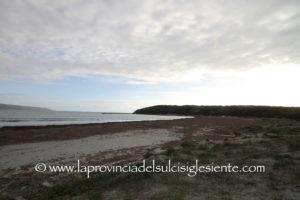 Roberto Li Gioi (M5S): «Sulla posidonia spiaggiata occorre un piano costiero regionale».