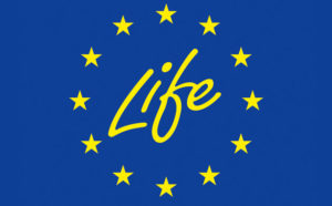 La Commissione europea ha pubblicato l'Invito a presentare proposte (Call for proposals) per l'annualità in corso per le diverse tipologie di progetti dei due sottoprogrammi di LIFE.