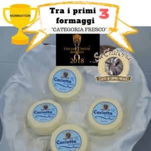 """La caciotta di capra """"Sa Craberia"""" è tra i primi 3 migliori formaggi nella """"categoria fresco"""", tra le lenomination """"Italian Cheese Awards2018""""."""