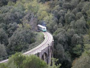 Con l'entrata in vigore della legge sulle linee ferroviarie a uso turistico approvata dal Parlamento e pubblicata ieri, per il trenino verde la Regione ha dato il via libera al contratto di gestione e manutenzione con l'Arst.