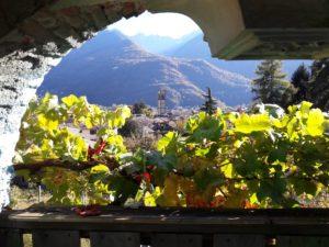 Dal 7 al 16 settembre la Valtellina ospiterà la 35ª edizione del Grappolo d'Oro di Chiuro.