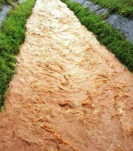 L'Amministrazione comunale di Carbonia, con atto n. 100 dell'8 maggio 2018, ha deliberato lo stato di calamità naturale per gli eventi avversi occorsi in data 4 maggio.