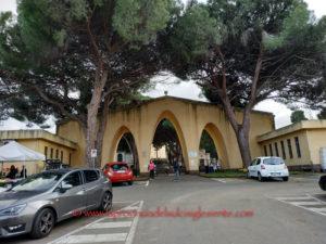 Il cimitero di Carbonia resterà chiuso ogni martedì al mattino tra il 26 marzo ed il 30 aprile per consentire le operazioni di estumulazione straordinaria.
