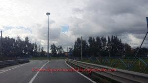 """I consiglieri di """"Progetto Comune"""" (San Giovanni Suergiu): «Il degrado e l'abbandono in cui versa la strada provinciale n° 75, creano pericolo e disagi per gli automobilisti»."""