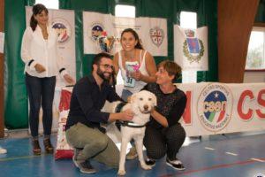 Jammin ha conquistato, a Uri, il titolo di miglior cane senza pedigree del 2018.