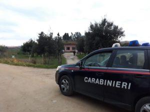 Questo pomeriggio, a Sestu, i carabinieri di Quartu Sant'Elena hanno arrestato un 17enne per detenzione ai fini di spaccio di sostanze stupefacenti, sottoposto alla misura cautelare in casa per minori.