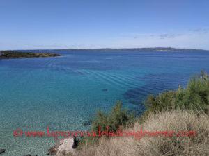Italia Nostra: «L'Area marina protetta deve interessare l'intero Arcipelago del Sulcis».