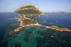 """""""Verso un Natale sostenibile"""", tre eventi gratuiti per festeggiare con l'Area marina protetta di Tavolara – Punta Coda Cavallo."""
