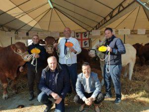 Nikele, bovino del veterinario Tore Fresi, di Monteleone Roccadoria, ha conquistato il titolo di campione nazionale junior alla 51ᵃ fiera di Bastia Umbra.