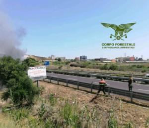 Oggi in Sardegna non sono stati segnalati incendi che hanno necessitato dell'intervento dei mezzi aerei del Servizio regionale antincendio.