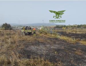 Dopo una domenica di tregua, oggi sono stati quattro gli interventi dei mezzi aerei del Servizio regionale antincendio coordinati dal Corpo forestale.