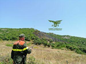 Ancora incendi in quest'ultimo giorno del mese di giugno, in Sardegna, che hanno richiesto l'intervento dei mezzi aerei del Servizio regionale antincendio.