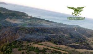 Sul fronte degli incendi è stata un'altra giornata drammatica, con numeri identici a quelli di due giorni fa: 41 segnalati, 12 con l'intervento degli elicotteri del Corpo forestale.