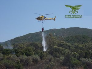 Il Corpo forestale e di Vigilanza Ambientale ha coordinato le operazioni di spegnimento in 17 eventi verificatisi in tutto il territorio regionale.