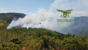 Un incendio sta minacciando una superficie boschiva di pregio nelle campagne di Vallermosa, dove è insediato un campo scout.