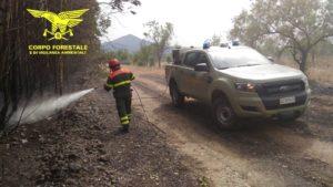 La giornata odierna è stata caratterizzata da una grave emergenza con ben 34 incendi, 6 di quali hanno richiesto l'intervento degli elicotteri del Corpo forestale.
