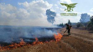 Un'altra giornata molto impegnativa per uomini e mezzi chiamati a fronteggiare l'emergenza incendi.
