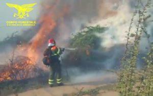Due elicotteri del Corpo Forestale sono decollati per intervenire su un incendio in località Toveddu, nel comune di Luras.