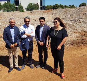 Gianni Lampis: «Dobbiamo passare dalla gestione dell'emergenza a soluzioni di prospettiva anche nella vicenda della posidonia spiaggiata ad Alghero».